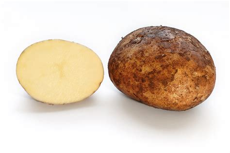 Potato Means by Potato Meaning And Definition