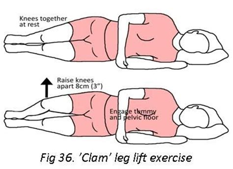 17 best images about exercise on abs planks