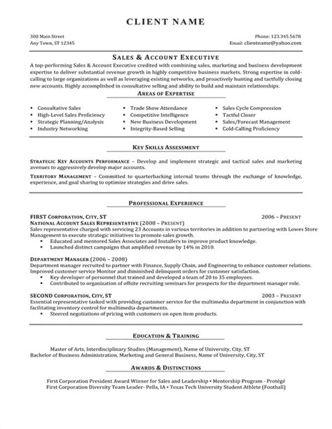 professional resume writing service resume sles