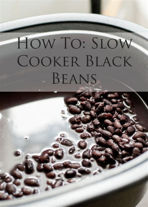 slow cooker from scratch 174 ten from scratch recipes for dried black beans in the slow cooker