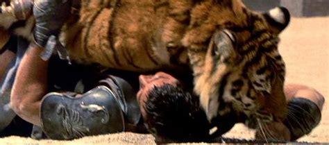 gladiator film lion tiger tiger gladiator pinterest tiger und the beast