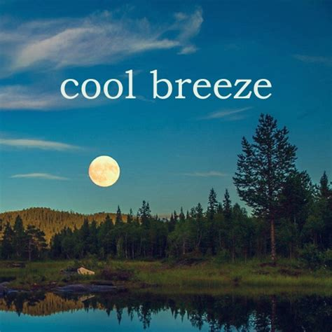 cool breeze 8tracks radio cool breeze 24 songs free and music