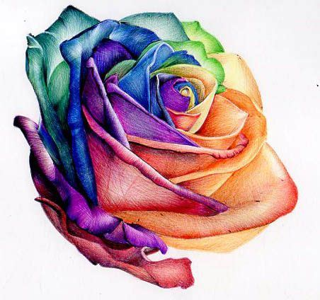 colourful rose tattoo 5 rainbow designs