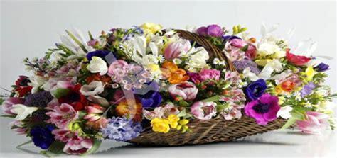 recapitare fiori fiori risparmio ed ia scelta lie solutions