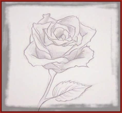 imagenes de rosas faciles imagenes de rosas dibujadas a lapiz archivos imagenes de