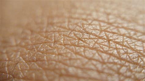 human skin texture up macro of brown person clean skin stock image image of free images texture leaf closeup material up human textile eye
