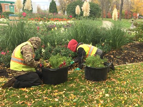 fall garden care 9 tips for fall lawn and yard care steinbachonline