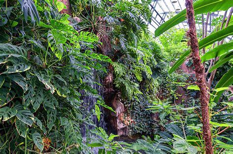 stuttgart botanischer garten wilhelma stuttgart botanischer garten