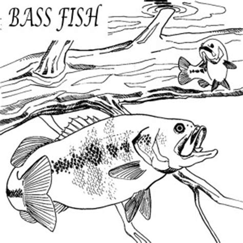 jumping fish coloring pages jumping fish coloring pages
