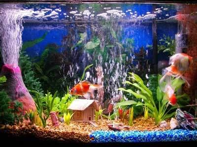 Unique Fish Tank Decorations by Aquarium Decors Think Kidsaquariumsquotes And More