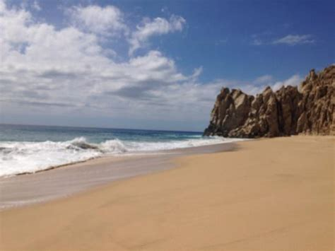 glass bottom boat tours california divorce s beach picture of glass bottom boat tour cabo