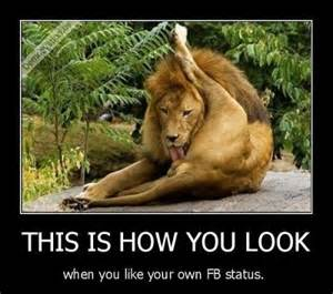 Like Your Own Post Meme - when you like your own facebook status