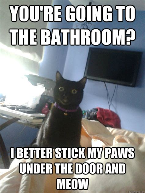 Meme Bathroom by You Re Going To The Bathroom I Better Stick Paws