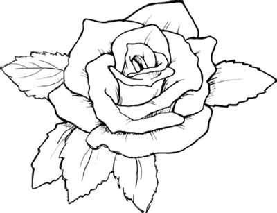 realistic rose coloring page realistic rose coloring page pretmic com