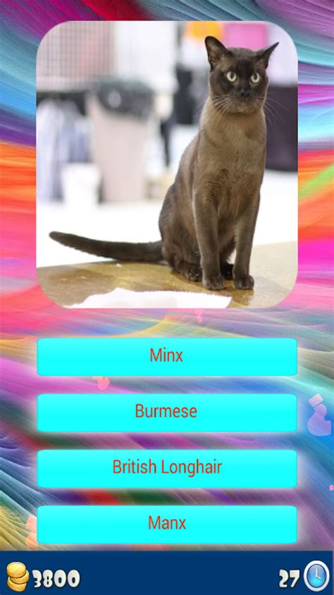 breed identifier app cat breeds identify your cat android apps on play
