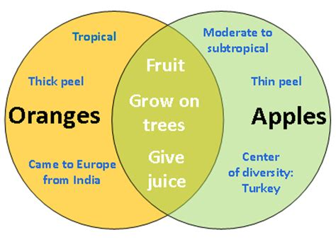 compare and contrast venn diagram exles writing focus comparison contrast mibba