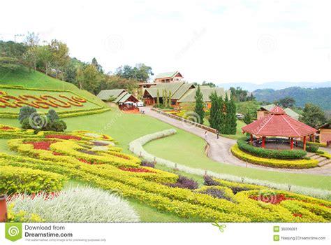 garten zierpflanze ornamental garden stock image image of floral botany