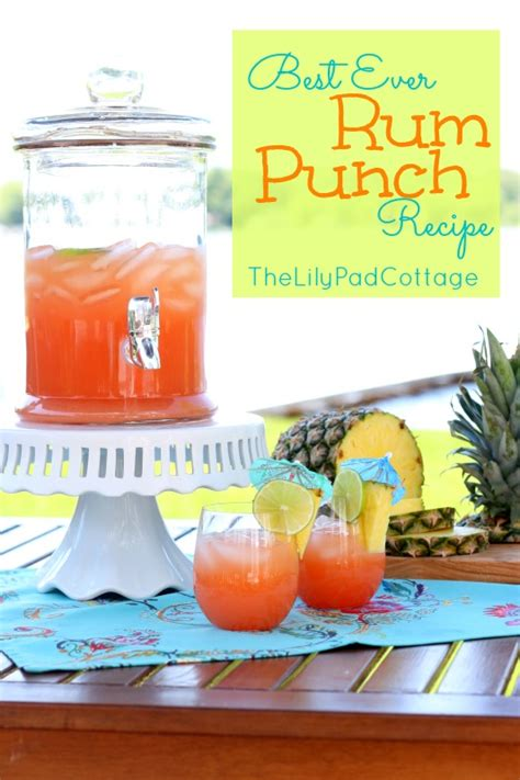 punch recipe and easy punch recipes