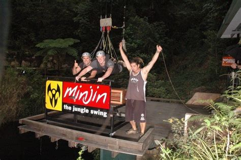 minjin jungle swing photo gallery of cairns great barrier reef boat tours