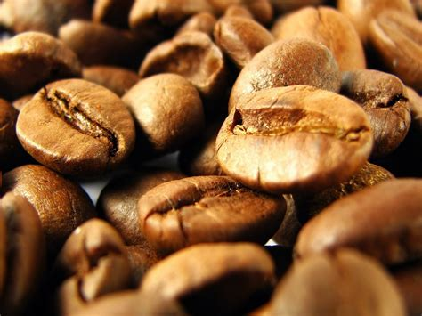 Coffee grain wallpapers and images   wallpapers, pictures
