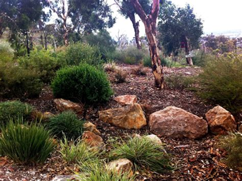 Garden Rocks Perth Landscaping With Local Plants About Gardens Garden Design Perth Wa
