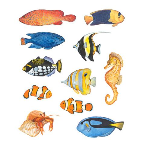 wall stickers fish fish single sheet peel and stick wall decals
