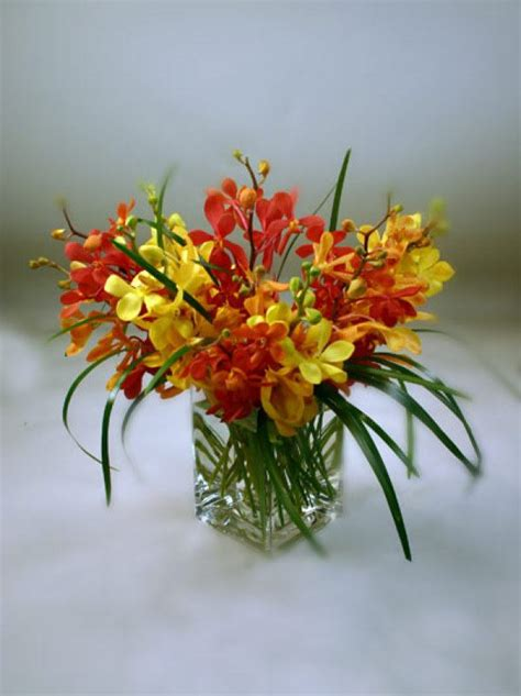top 28 what to do when your orchid flowers fall morningside florist flower shop in rancho