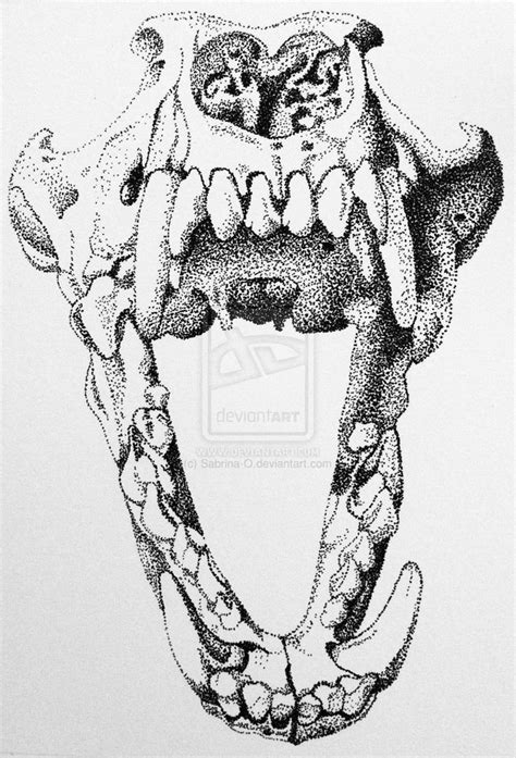 tattoo pen for dogs 100 00 wolf or dog skull stipple by sabrina o