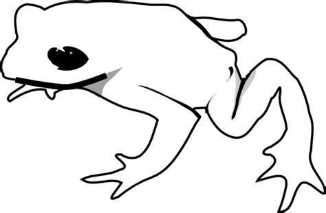 frog outline template frog outline animal clip at clker vector clip