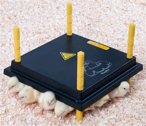 Heat L For Ducklings comfort baby brooder heat l heater plate for baby