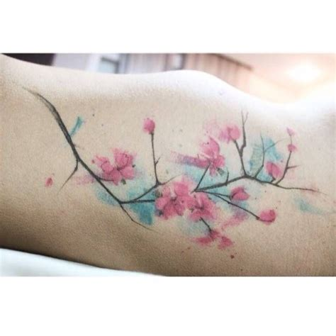 cherry blossom watercolor tattoo image result for watercolour cherry blossom