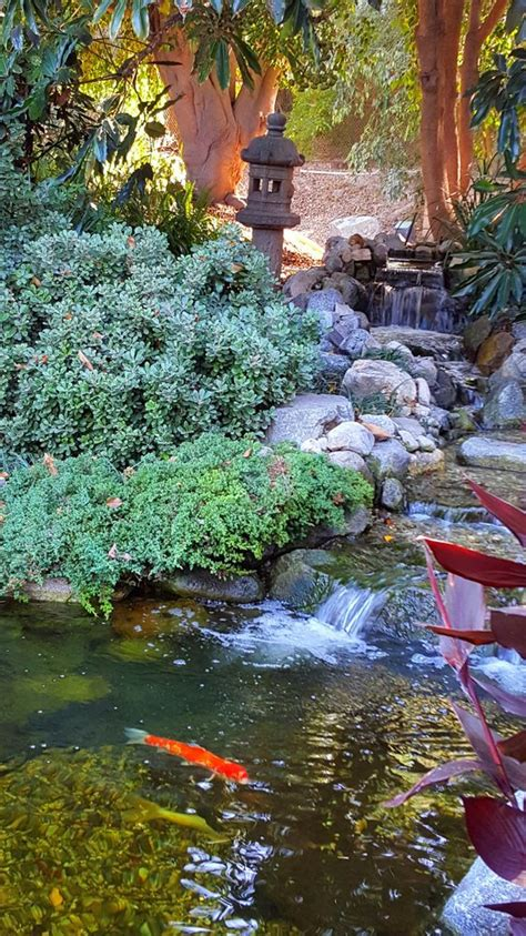 Japanese Gardens In Los Angeles And Where To Find Them Japanese Botanical Gardens Los Angeles