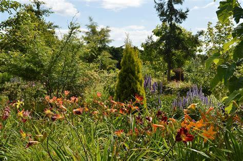garten im august botanischer garten im august baumschule hager