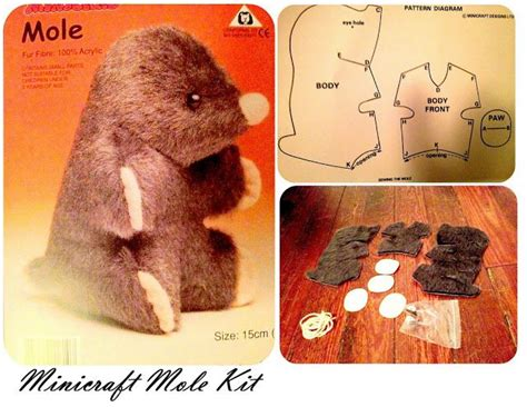 24 Best Mole Day Ideas Images On Pinterest Chemistry Projects Mole Day And School Projects Mole Project Template