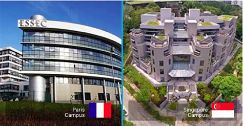 Mba Essec Singapore by Global Mba Mba Essec Business School