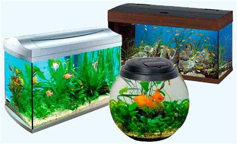 feng shui fish tank in bedroom fish tank interior design ideas native home garden design
