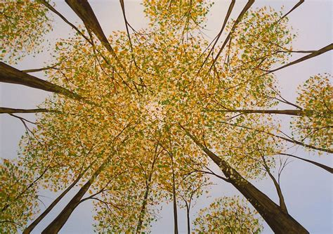 original tree painting look up by amy giacomelli painting