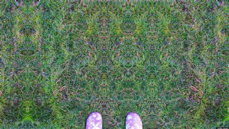 what does pattern lsd photos chelsea mimics psychedelic experience