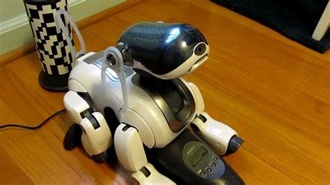 sony robots for sale cute and smart sony robot dog aibo ers 7 mp4 youtube