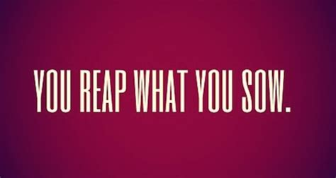 You Reap What You Sow Essay by Deserve It