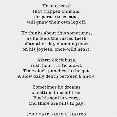 trapped in time poem by 17 best images about john mark green poetry on