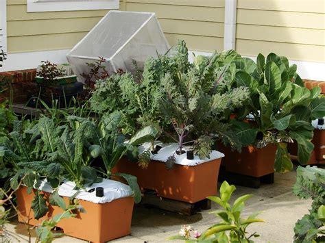 urban green earthbox garden