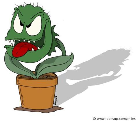 Komik The Pitcher 29 wer kann fleischfressende pflanzen quot comic m 228 223 ig quot zeichnen