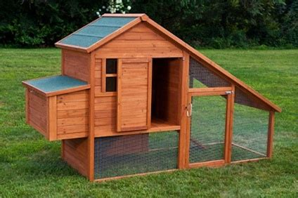 chickens for backyards coupon code high quality backyard chicken coop house with 2 internal perches