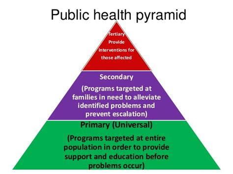 health services pyramid images