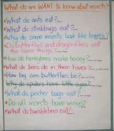 question and answer insect book