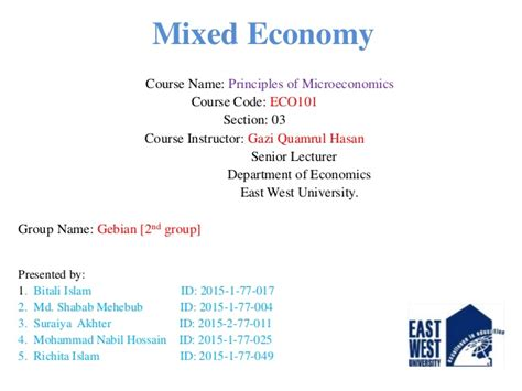 section 3 mixed groups mixed economy eco101