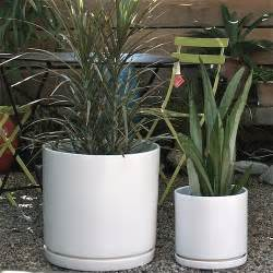 House Plant Pots Gainey Cylinder Ceramic Pots Modern Indoor Pots And