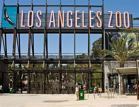Image Gallery Los Angeles Zoo Discount Tickets To La Zoo Lights Socal Field Trips