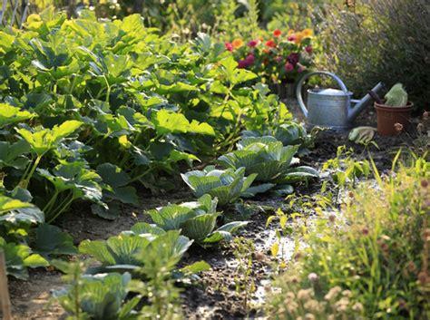 Decorer Potager by Potager Ou Jardin Fleuri Comment Am 233 Nager Un Talus